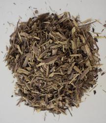 Jamaican Dogwood (Boxwood)
