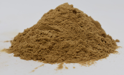 Black Cohosh Extract <BR>(2.5% Trit. Saponins)