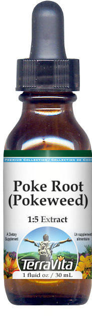Poke Root (Pokeweed) - Glycerite Liquid Extract (1:5) - No Flavor