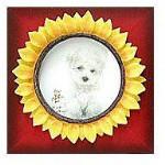 "Sunflower Frame - Style 3 - 3  x 3"""