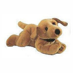 Amber the Golden Retriever Puppy