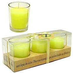 Lemon Verbena - Set of 3