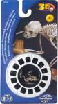3D Reel Cards - Skeletal Structures - Set of Three