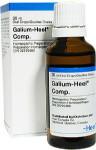 Galium-Heel