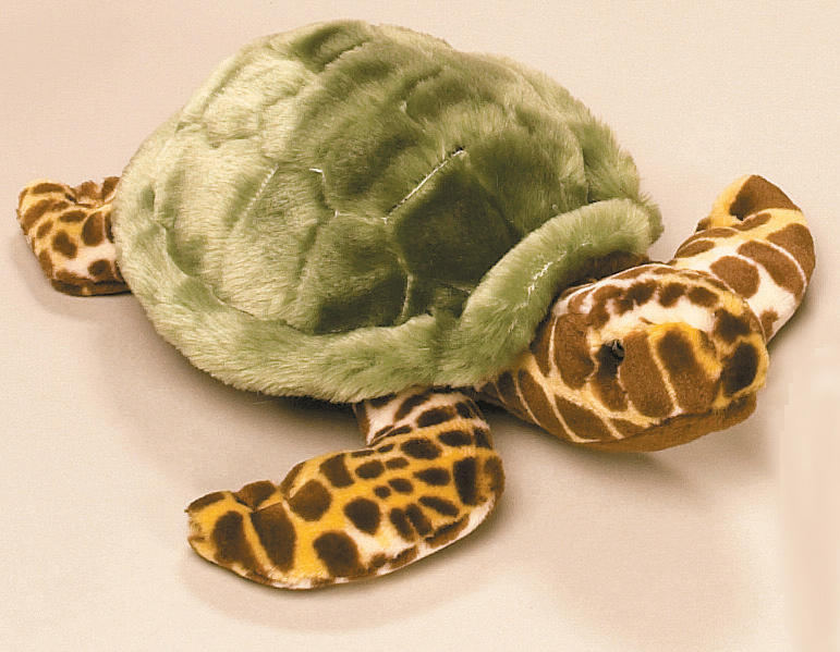 National Geographic - Turtle