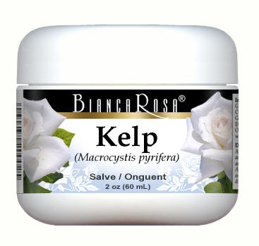 Kelp - Salve Ointment