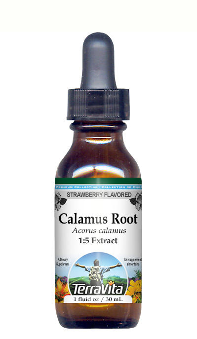 Calamus Root - Glycerite Liquid Extract (1:5) - Strawberry Flavored