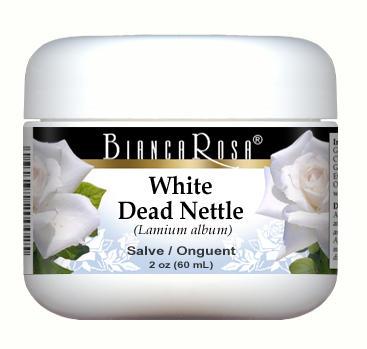 White Dead Nettle - Salve Ointment