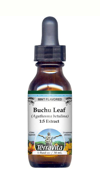 Buchu Leaf (Organic) - Glycerite Liquid Extract (1:5) - Mint Flavored