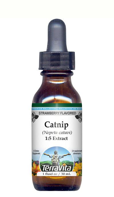 Catnip - Glycerite Liquid Extract (1:5) - Strawberry Flavored