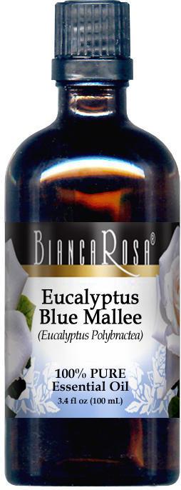Eucalyptus Blue Mallee Essential Oil