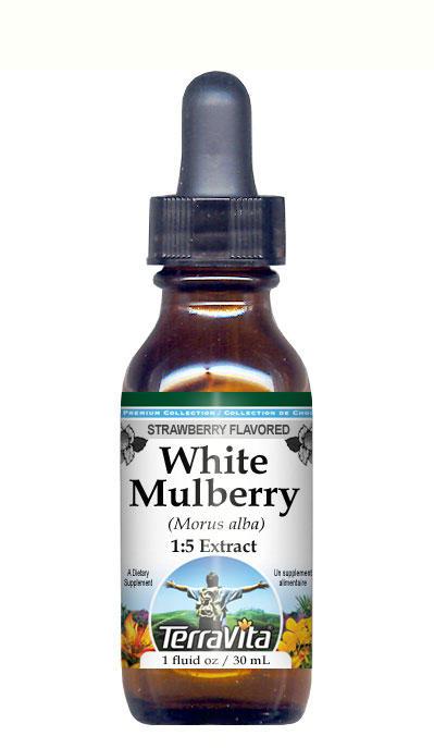 White Mulberry (Morus alba) Glycerite Liquid Extract (1:5)