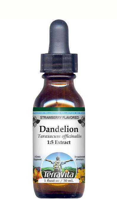 Dandelion Leaf Glycerite Liquid Extract (1:5) - Strawberry Flavored
