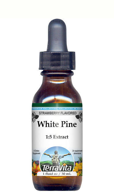 White Pine Bark Glycerite Liquid Extract (1:5)