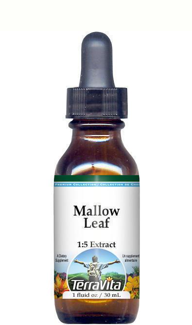 Mallow (Malva sylvestris) Flower Glycerite Liquid Extract (1:5) - No Flavor