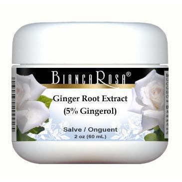Ginger Root Extract (5% Gingerol) - Salve Ointment