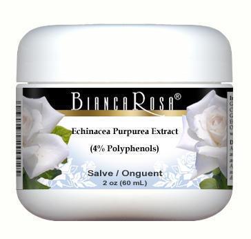 Echinacea Purpurea Extract (4% Polyphenols) - Salve Ointment
