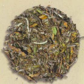 Oasis Mango White Tea (Loose) - Additional View