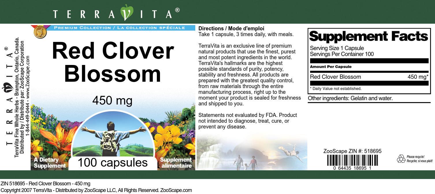 Red Clover Blossom