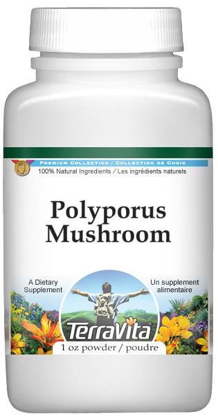 Polyporus Mushroom Powder