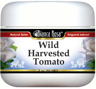 Wild Harvested Tomato Salve