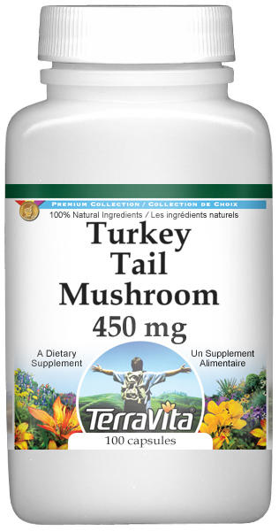 Turkey Tail Mushroom - 450 mg