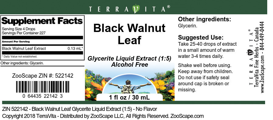 Black Walnut Leaf