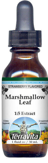 Marshmallow Leaf Glycerite Liquid Extract (1:5) - Strawberry Flavored