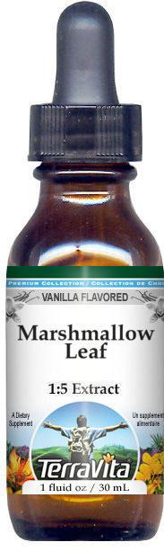 Marshmallow Leaf Glycerite Liquid Extract (1:5) - Vanilla Flavored