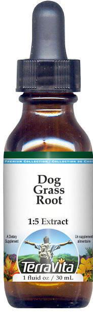 Dog Grass Root Glycerite Liquid Extract (1:5) - No Flavor