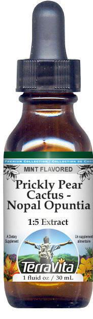 Prickly Pear Cactus - Nopal Opuntia Glycerite Liquid Extract (1:5)