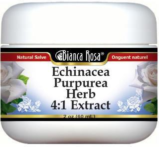 Echinacea Purpurea Herb 4:1 Extract Salve