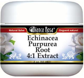 Echinacea Purpurea Root 4:1 Extract Salve