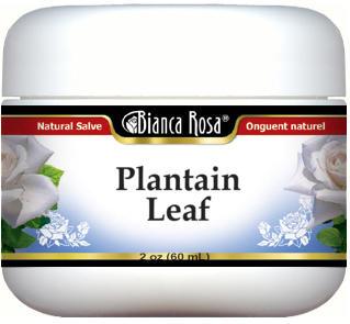 Plantain Leaf Salve