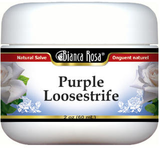 Purple Loosestrife Salve