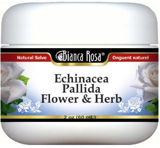 Echinacea Pallida Flower and Herb Salve