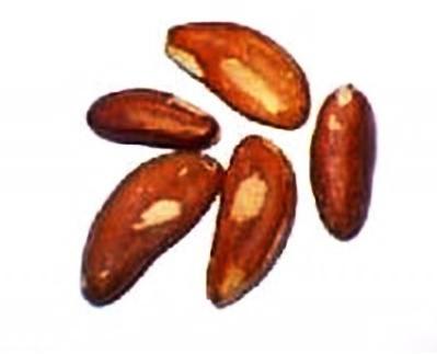 Brazil Nuts <BR>(Raw)