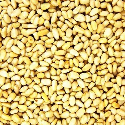 Mediterranean Pine Nuts