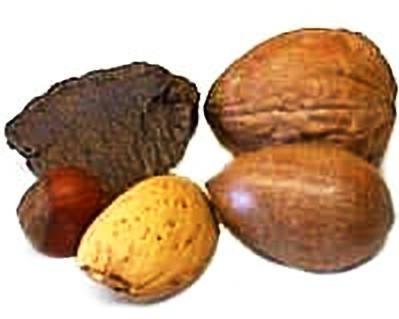 Mixed Nuts, In Shell, Raw