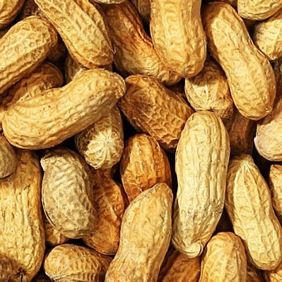 Peanuts <BR>(In Shell, Roasted and Salted)