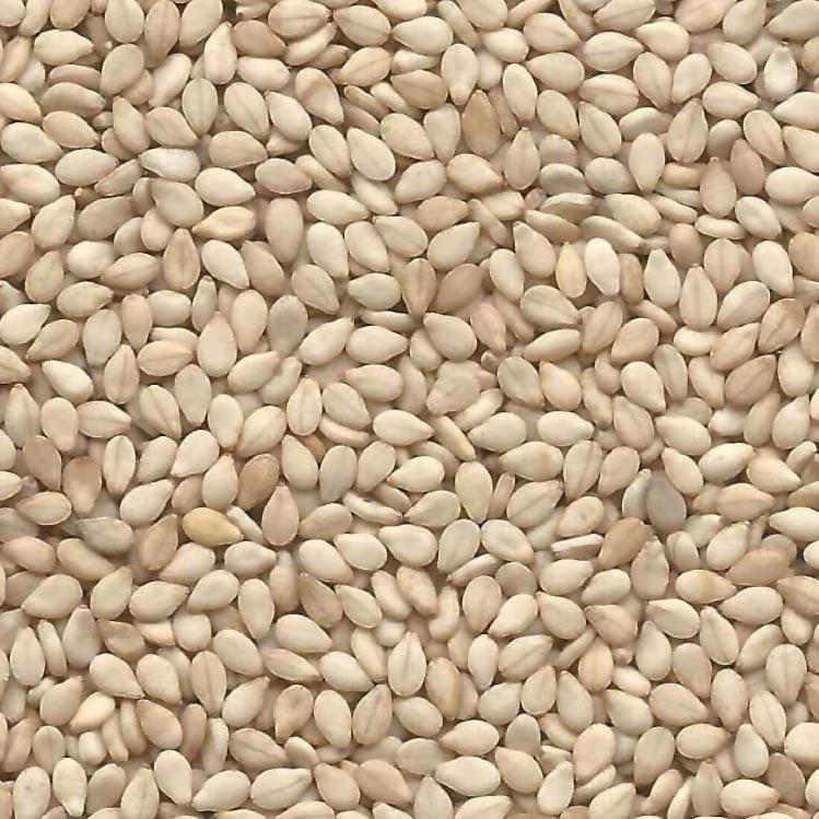Sesame Seeds <BR>(Natural)